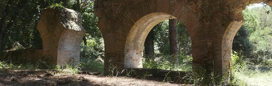 Visita alla Tenuta di Castelporziano