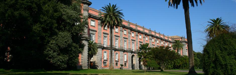 Museum and Royal Wood of Capodimonte