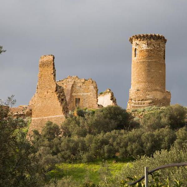 Castello di Poggio Diana - Castello - Ribera