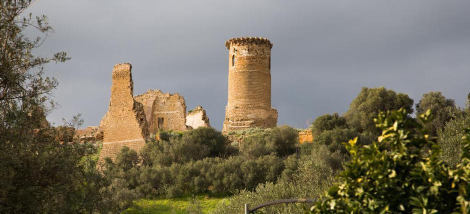 Castello di Poggio Diana