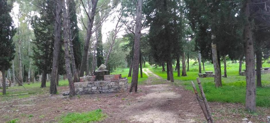 Bosco della Resinata