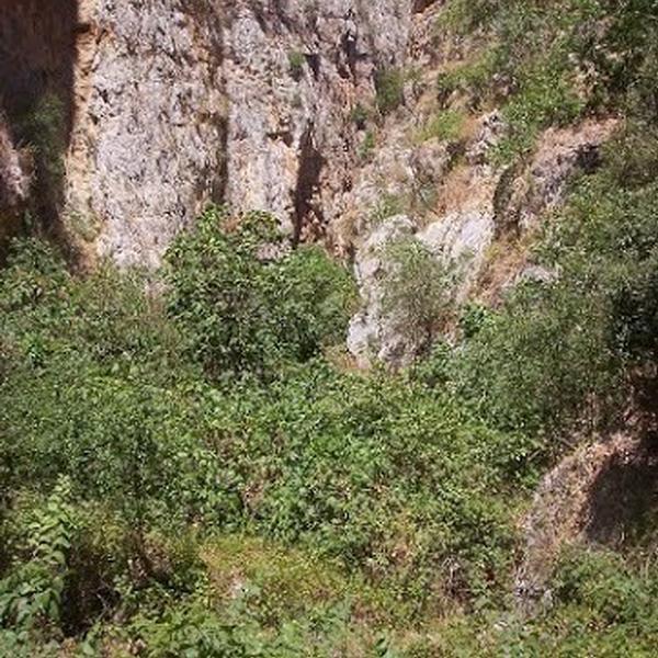 Gole della Tardara - Aree naturalistiche - Sambuca di Sicilia