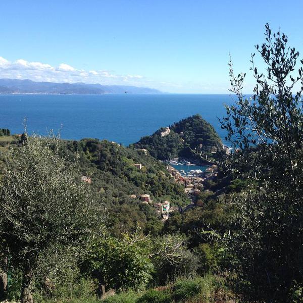 Parco di Portofino (per le scuole)