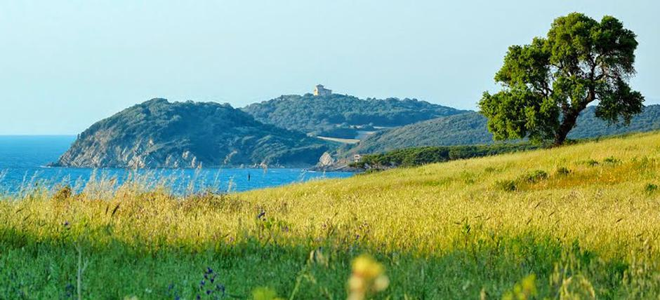 On the trails of the Etruscans and Romans in Cecina's valley: archeotrekking tour