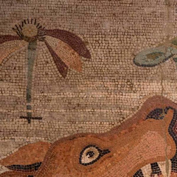 Mosaico nilotico dalla Casa del Fauno