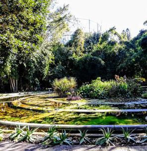 Appuntamento in giardino
