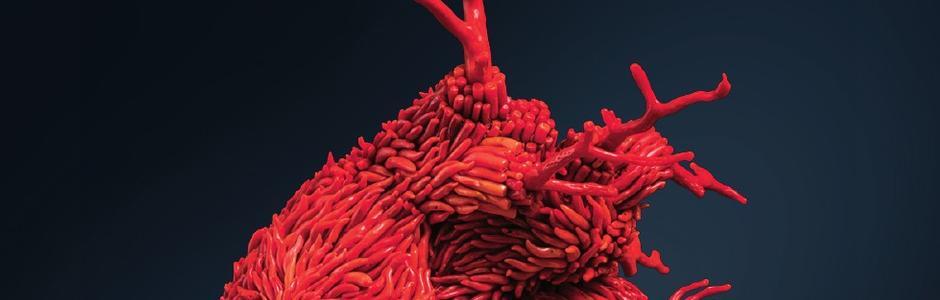 Jan Fabre. Oro Rosso Sculture d'oro e corallo, disegni di sangue