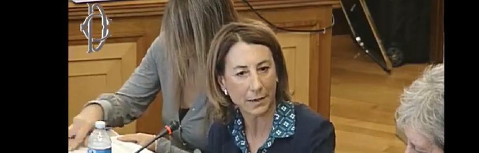 Audizione in Commissione Cultura della Camera dei deputati