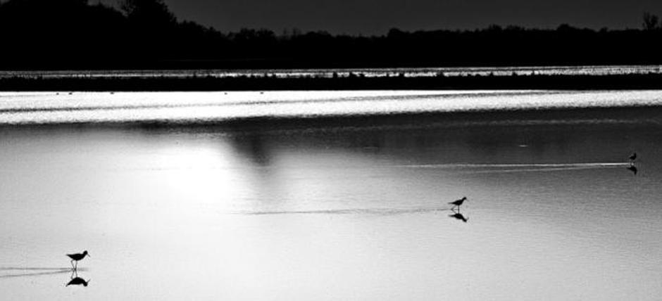 """""""Oltre la nebbia...Trino e dintorni"""" Mostra fotografica di Roberto Cavallo"""