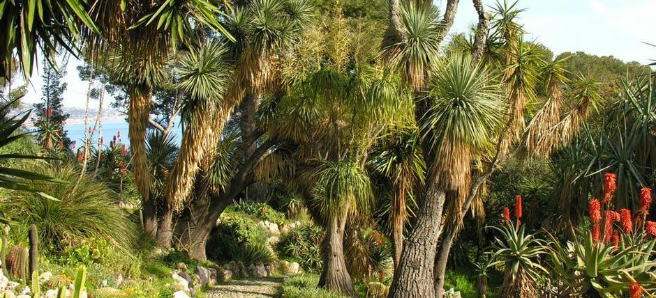 Caccia al tesoro botanico ai Giardini Hanbury