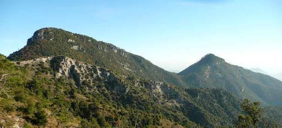 Sul Monte Abellio, tra primule e camosci