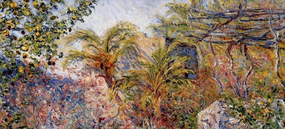 Il palmeto del Sasso, oasi africana di Liguria