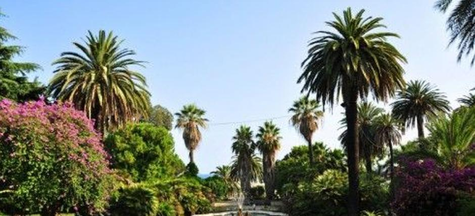 Discovering the Sanremo Parks and the Flower Museum