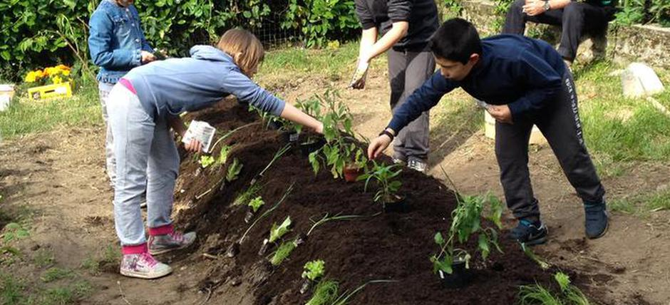 Synergistic agriculture and permaculture. From a synergic vegetable garden to a newspaper office, an educational path for students of primary and secondary schools