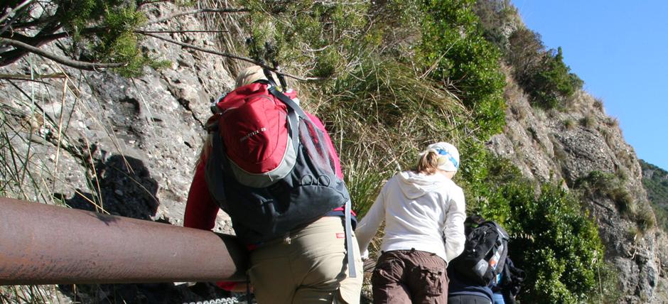 Sul Sentiero dei Tubi, nel Parco di Portofino